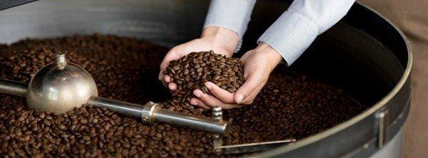 cung cap cafe