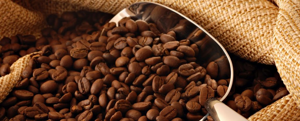 Cà phê hạt giá sỉ tại quận 2