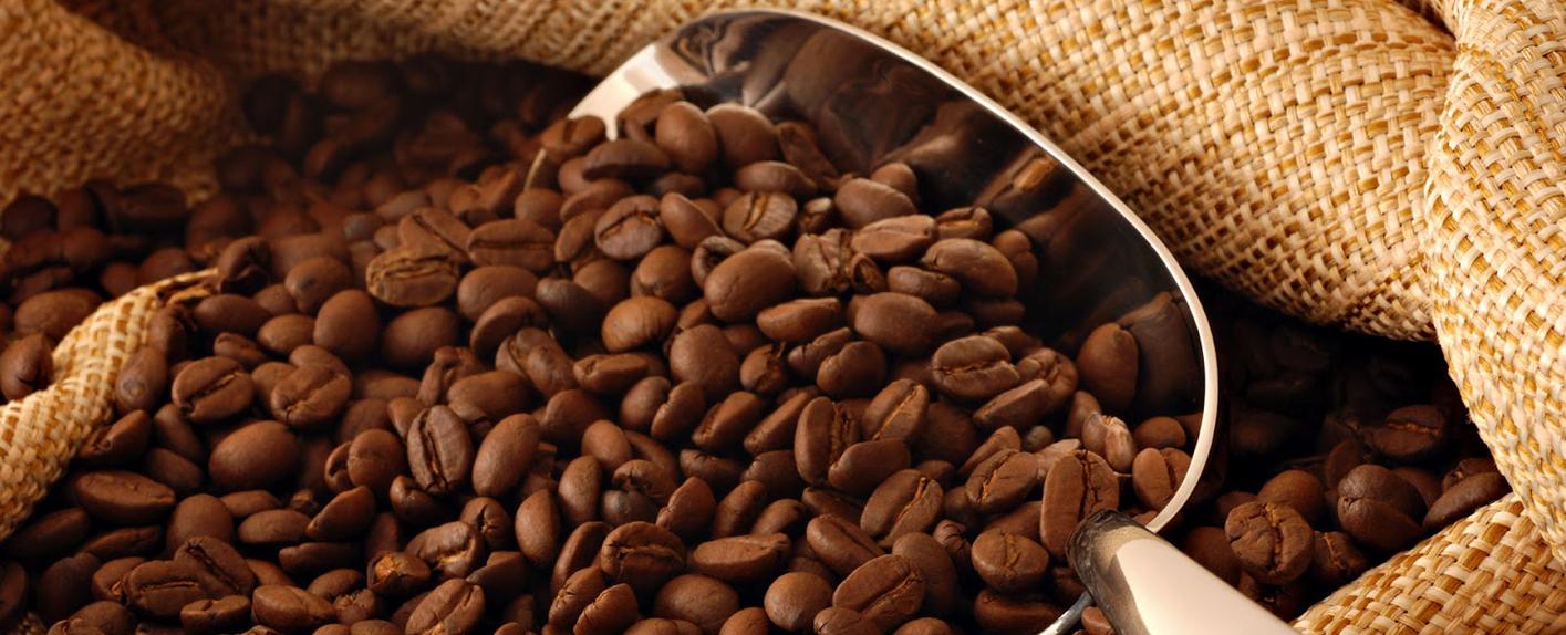 cac loai hat cafe