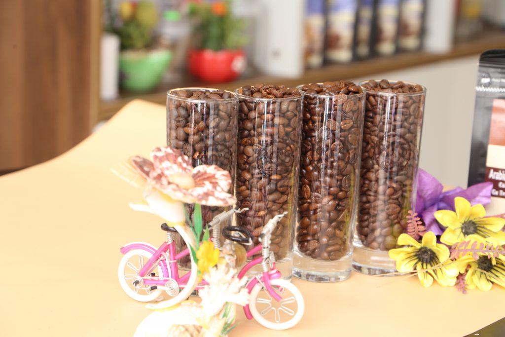 Chủ quán cafe cần biết về các loại hạt cafe có thể pha phin