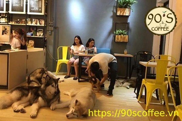 tang 1 la nhung chu cho Husky choi dua voi khach