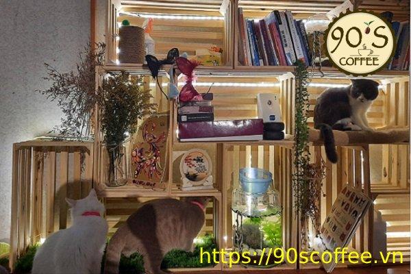 Nhung chu meo dang yeu tai ailu cat house coffee